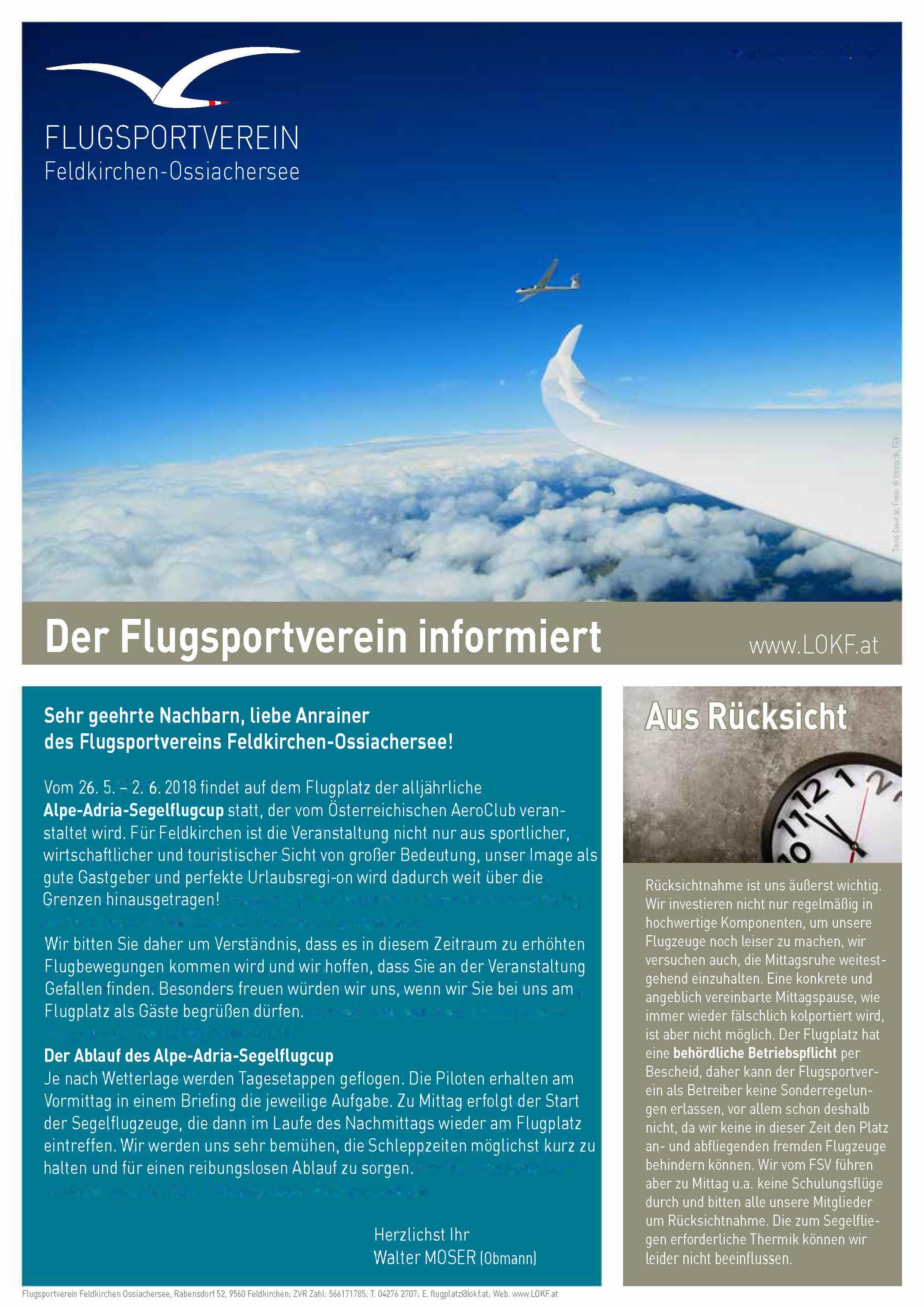 FSV_Flyer_AAC18.jpg